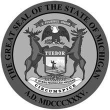 Rn Programs In Michigan Adn Bsn Msn Registerednursingorg