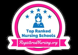 Best Nursing Schools in Michigan - ADN, BSN, MSN