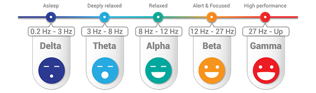 Graph of your 5 brainwave types